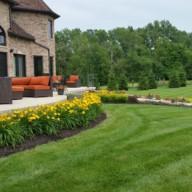 Perennials, lawn